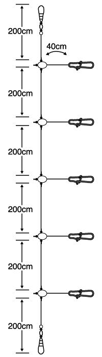 イカ リーダー40cm5本