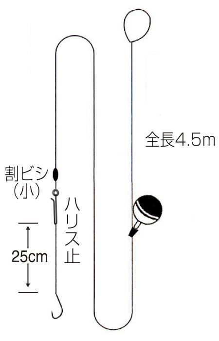 ブルーギル4.5m