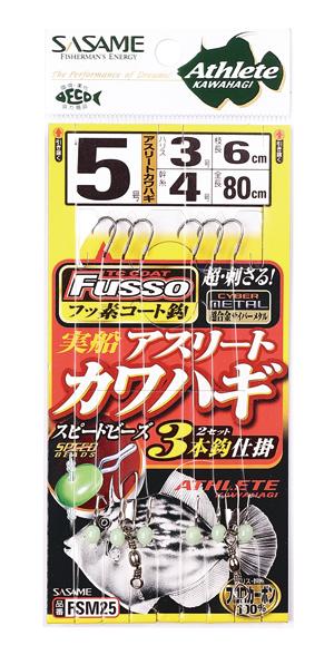 FSM25