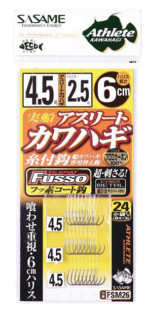 FSM26