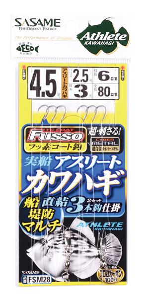 FSM28